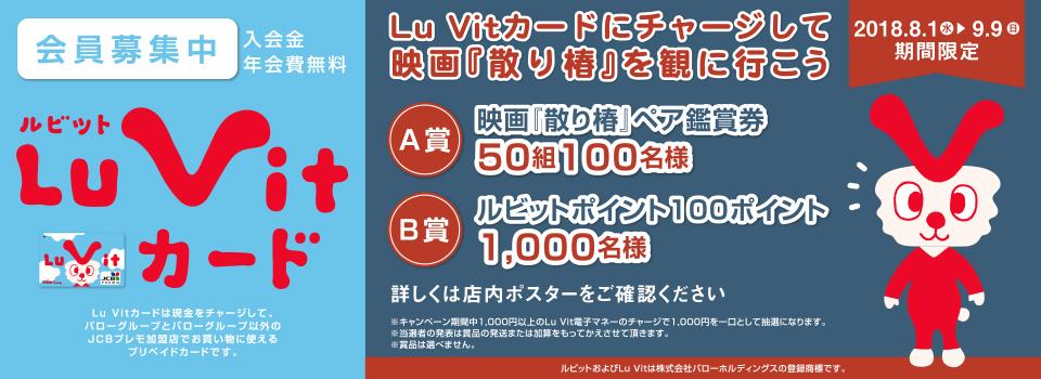 Luv itカード会員様大募集!!
