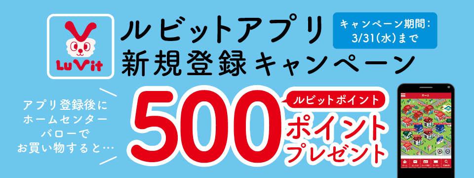 3月31日までキャンペーン開催中!!